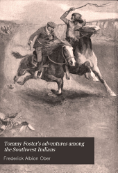 Tommy Foster's Adventures Among the Southwest Indians