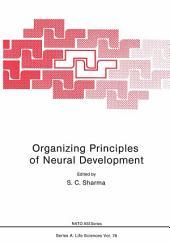 Organizing Principles of Neural Development