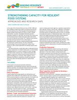 Strengthening capacity for resilient food systems PDF