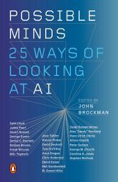 Deep Thinking: Twenty-Five Ways of Looking at AI