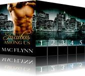 Incubus Among Us Box Set (Shifter Romance)