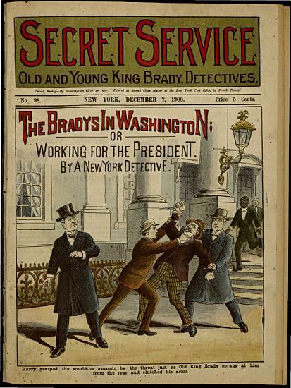 The Bradys in Washington  Or  Working for the President PDF