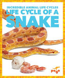 Life Cycle of a Snake PDF