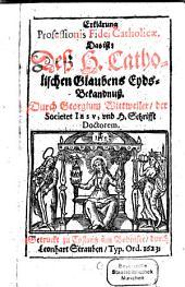 Erklärung professionis fidei catholicae