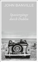 Spazierg  nge durch Dublin PDF