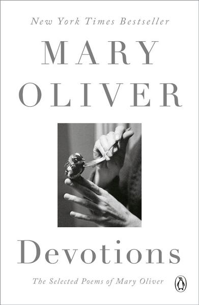 Download Devotions Book
