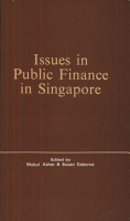 Issues in Public Finance in Singapore PDF
