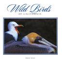 Wild Birds of California PDF