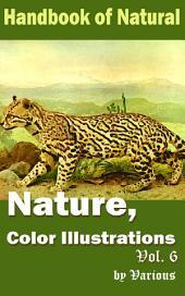 Nature, Color Illustrations Vol.6: Handbook of Nature