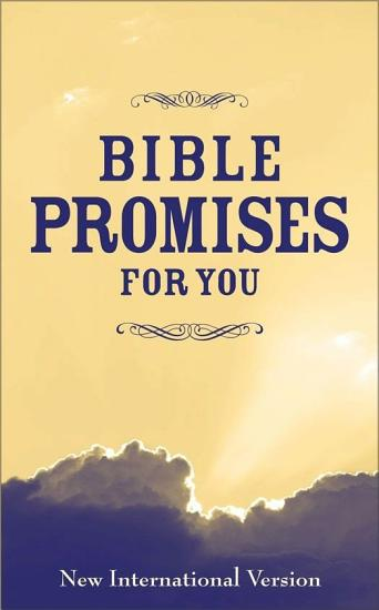 Bible Promises for You PDF