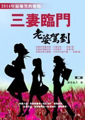 三妻臨門第二部: 《最新浪漫愛情勵志幽默小說》