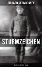 Sturmzeichen  Ein Erster Weltkrieg Roman  PDF