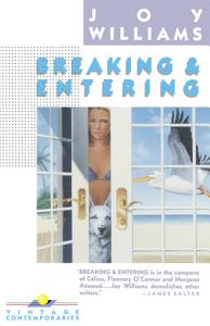 Breaking and Entering Book
