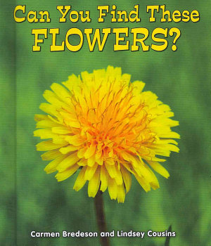Can You Find These Flowers  PDF