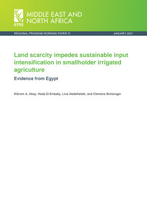 Land scarcity impedes sustainable input intensification in smallholder irrigated agriculture  Evidence from Egypt