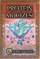 Protein Mucizesi