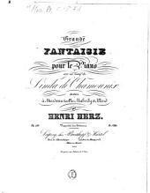 Grande fantaisie: pour le piano ; sur un motif de Linda di Chamonix ; op. 138