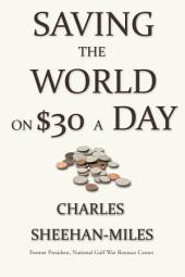 Saving the World On Thirty Dollars a Day: An Activist's Guide to Starting, Organizing and Running a Non-Profit Organization