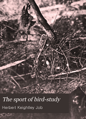 The Sport of Bird-study: A Book for Young Or Active People