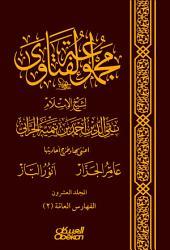 مجموعة الفتاوى لشيخ الإسلام تقي الدين أحمد بن تيمية الحرّاني: المجلد العشرون : الفهارس العامة