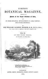 Curtis's Botanical Magazine: Volume 81