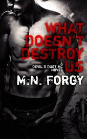 What Doesn't Destroy Us: The Devil's Dust #1