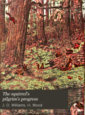 The Squirrel's Pilgrim's Progress: A Book for Boys and Girls