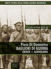 Breve storia della Prima Guerra Mondiale vol.1 (ebook + audiolibro): Bagliori di guerra
