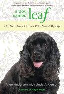 A Dog Named Leaf PDF