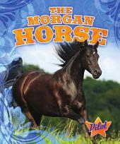 Morgan Horse, The