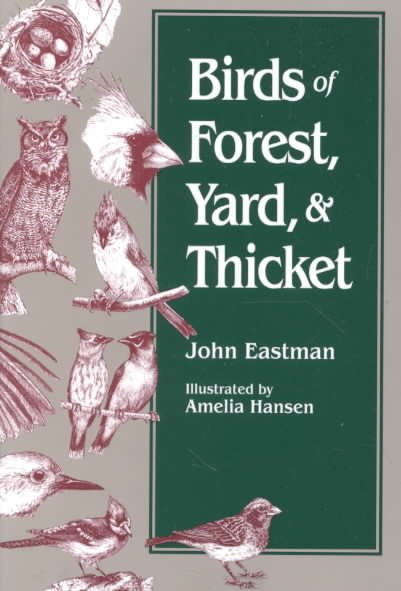 Download Birds of Forest  Yard  and Thicket Book