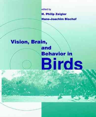 Vision, Brain, and Behavior in Birds