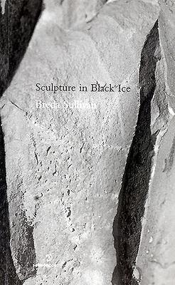 Sculpture in Black Ice