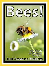 Just Bees! vol. 1: Big Book of Photographs & Bee Pictures