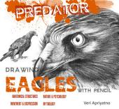 Drawing Eagles with Pencil
