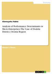 Analysis of Performance Determinants in Micro-Enterprises. The Case of Dodola District, Oromia Region