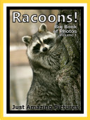 Just Racoons! vol. 1: Big Book of Racoon Photographs & Pictures
