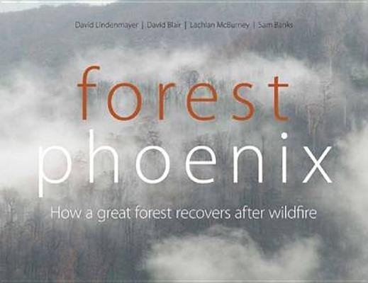 Download Forest Phoenix Book