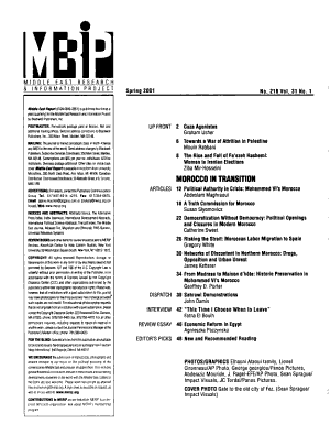 Middle East Report PDF