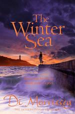 The Winter Sea