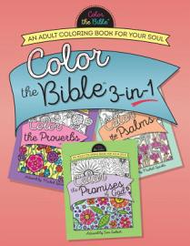Color The Bible 3 In 1  Volume 2