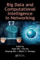 Big Data and Computational Intelligence in Networking PDF