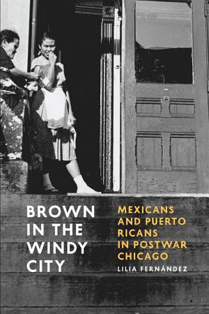 Brown in the Windy City PDF