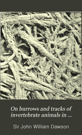On Burrows and Tracks of Invertebrate Animals in Palaeozoic Rocks, and Other Markings