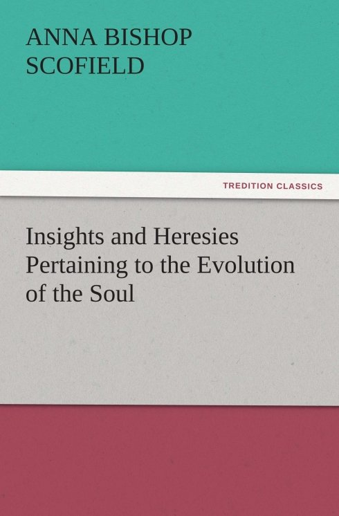 Insights and Heresies Pertaining to the Evolution of the Soul