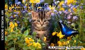 Kitten and Butterfly Count to Ten: A Learn with Animal Friends Book