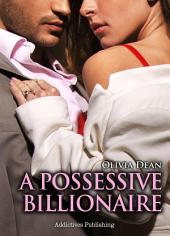 A Possessive Billionaire vol.4: His, Body and Soul