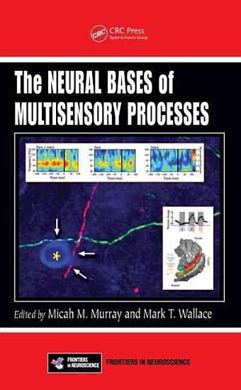 The Neural Bases of Multisensory Processes PDF