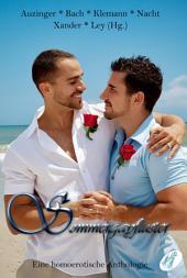Sommergayflüster: Eine homoerotische Anthologie