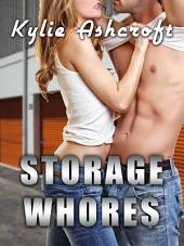 Storage Whores (Parody Erotica)